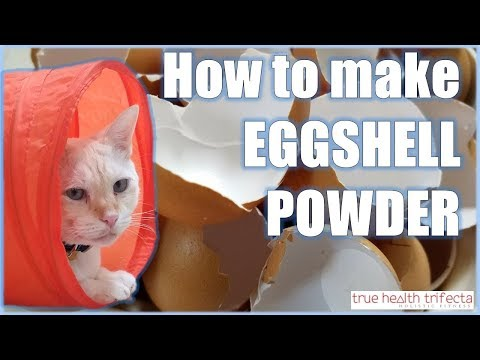 How to make Raw Cat Food WITHOUT Chicken Bone! – Eggshell Powder Recipe / Cat Lady Fitness