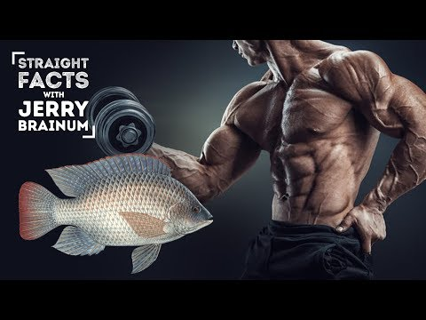 The Major Reason Bodybuilders Should Not Eat Tilapia   Straight Facts