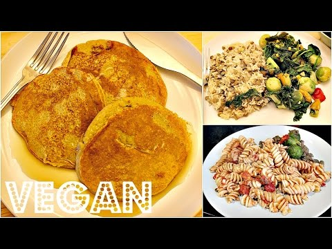WHAT I ATE IN A DAY #9 (EASY VEGAN RECIPES) | Cheap Lazy Vegan