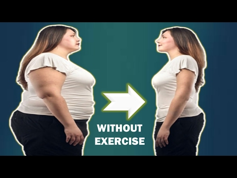How To Lose Weight Without Exercise – Best weight loss diet