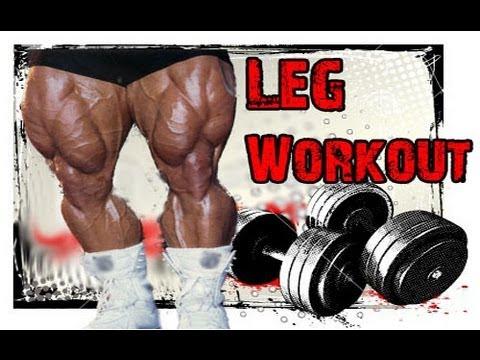 Beginners LOWER BODY Workout Program