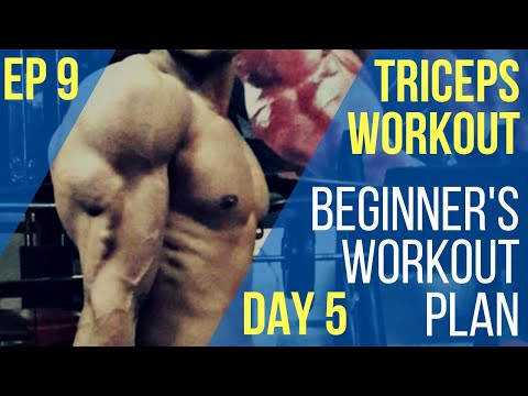 Beginner's Triceps Workout |Day 5 | #Beginners #Workout #Plan #Triceps #Workout
