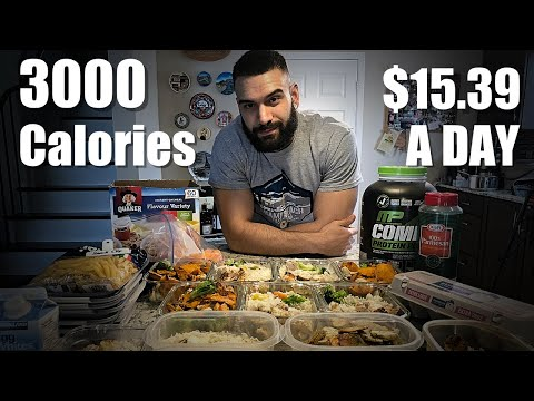 3000 Calories Meal Plan | $15/Day | Full Meal Prep Explained | Cutting Or Bulking Diet