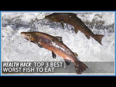 Top 3 Best | Worst Fish to Eat: Health Hacks- Thomas DeLauer