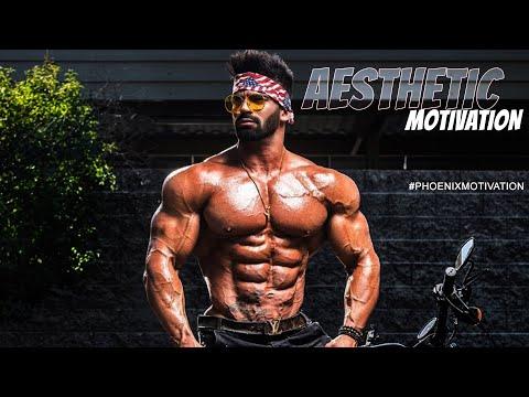 Aesthetic Fitness Motivation V1 (2019)