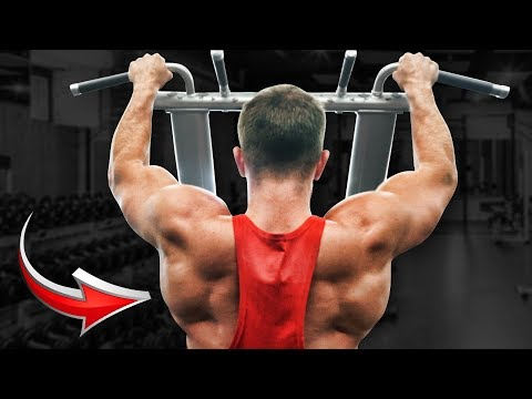 COMPLETE BACK WORKOUT | 3 Exercises (Fake Natties Can't Handle It)