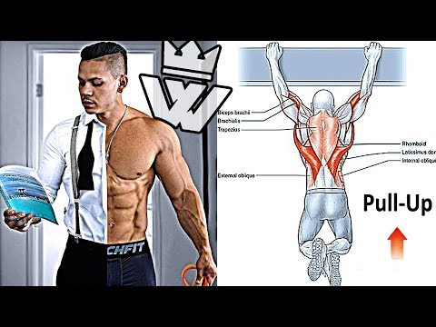 FULL BODY WORKOUT   ABS, LEGS, SHOULDERS & BACK