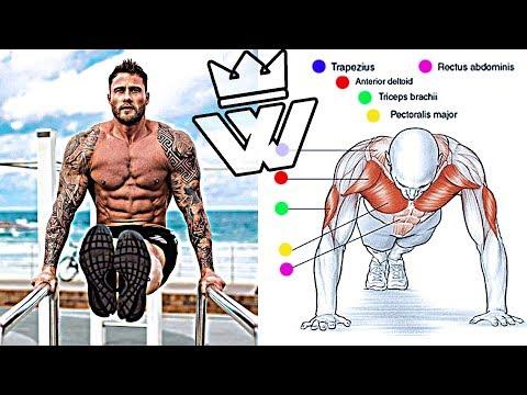 Bodyweight Strength Training | EXERCISES for BEGINNER