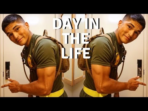 My Day In The Life | Tactical Training & Nutrition Tips