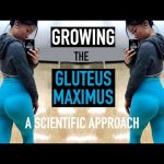 EXERCISES FOR GLUTE GROWTH & STRENGTH | A Scientific Approach to Training the Glutes