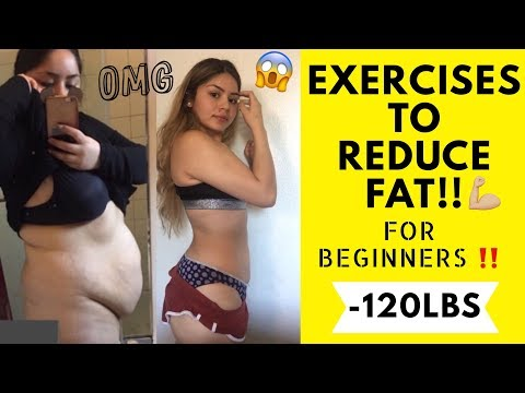 FULL BODY WORKOUTS FOR WEIGHT LOSS (NO EQUIPMENT)