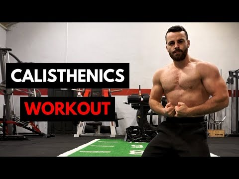 Calisthenics Shoulder & Tricep Workout