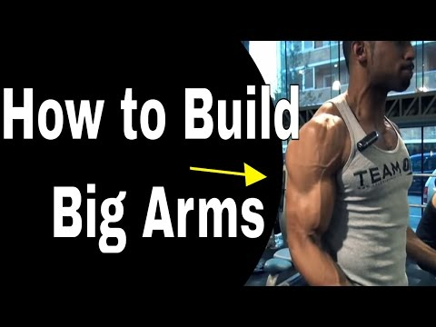 Arm Workout to Build Big Arms | The Fitness Model Workout