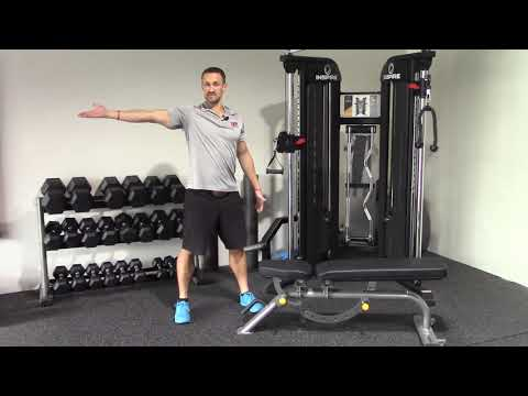 How To Do A Dumbbell Row   Muscles Actions Variations   Show Up Fitness