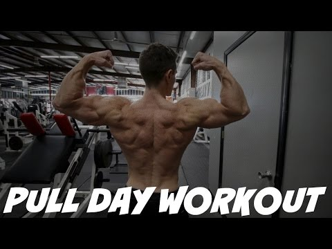 PULL DAY WORKOUT | BEGINNER ADVICE | Jason Wittrock